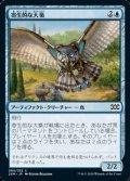 【日本語】寄生的な大梟/Parasitic Strix