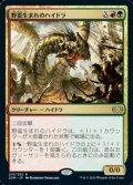 【日本語Foil】野蛮生まれのハイドラ/Savageborn Hydra