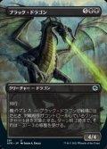 ☆特殊枠【日本語】ブラック・ドラゴン/Black Dragon