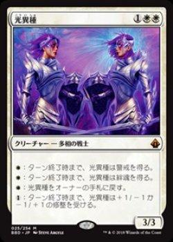 画像1: 【日本語】光異種/Brightling