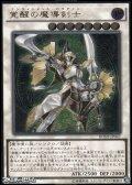 【アルティメットレア】覚醒の魔導剣士