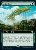 ☆特殊枠【日本語Foil】木霊の手の内/Kodama's Reach