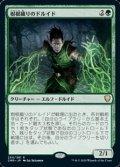 【日本語Foil】樹根織りのドルイド/Rootweaver Druid