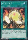 【ノーマル】紅玉の宝札