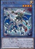 【レア】嵐竜の聖騎士
