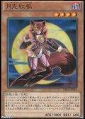 【パラレル】月光紅狐