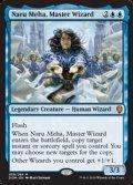 【英語】練達の魔術師、ナル・メハ/Naru Meha, Master Wizard