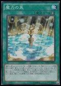 【スーパーレア】魔力の泉