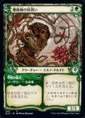 ☆特殊枠【日本語Foil】薔薇棘の見習い/Rosethorn Acolyte