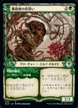 画像1: ☆特殊枠【日本語Foil】薔薇棘の見習い/Rosethorn Acolyte