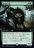 ☆特殊枠【日本語】意地悪な狼/Wicked Wolf