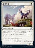 【日本語】繁栄の狐/Flourishing Fox