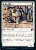 【日本語】駐屯地の猫/Garrison Cat