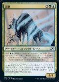 【日本語】領獣/Parcelbeast