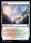 【日本語】高地の森/Highland Forest