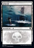 【日本語】冠雪の沼/Snow-Covered Swamp(No.280)