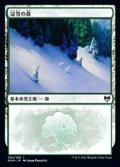 【日本語】冠雪の森/Snow-Covered Forest(No.284)
