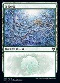 【日本語】冠雪の森/Snow-Covered Forest(No.285)