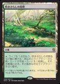 【日本語】吹きさらしの荒野/Windswept Heath