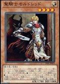 【ノーマル】聖騎士モルドレッド
