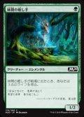 【日本語】林間の癒し手/Healer of the Glade