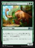 【日本語】打ち壊すブロントドン/Thrashing Brontodon