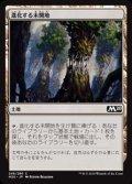 【日本語】進化する未開地/Evolving Wilds