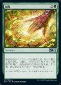 【日本語】耕作/Cultivate
