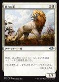 【日本語】群れの王/King of the Pride