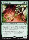 【日本語Foil】深き森の隠遁者/Deep Forest Hermit