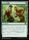 【日本語Foil】エルフの憤激/Elvish Fury
