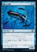 【日本語】鋼ヒレの鯨/Steelfin Whale