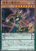 【レア】降竜の魔術師