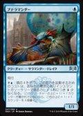 【日本語】プテラマンダー/Pteramander