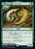 【日本語Foil】厄介な害獣、ブレックス/Blex, Vexing Pest