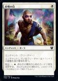 【日本語】歩哨の目/Sentinel's Eyes