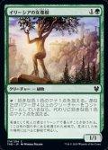 【日本語】イリーシアの女像樹/Ilysian Caryatid