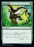 【日本語】神秘の撤回/Mystic Repeal