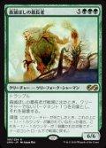 【日本語】森滅ぼしの最長老/Woodfall Primus