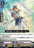 【R】逆風の騎士 セリム