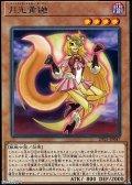 【レア】月光黄鼬