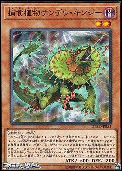 画像1: 【ノーマル】捕食植物サンデウ・キンジー