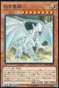【パラレル】白き霊龍