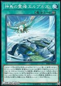 【ノーマル】神鳥の霊峰エルブルズ
