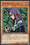 【ノーマル】黒き森のウィッチ