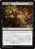 【日本語】湿地での被災/Marsh Casualties