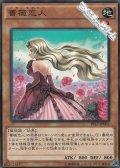 【ノーマル】薔薇恋人