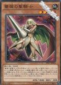 【ノーマル】薔薇の聖騎士